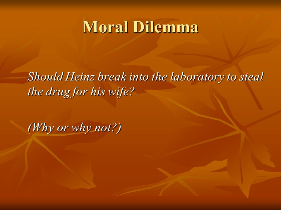 Moral Dilemma Should Heinz break into the laboratory to steal the drug for his wife.