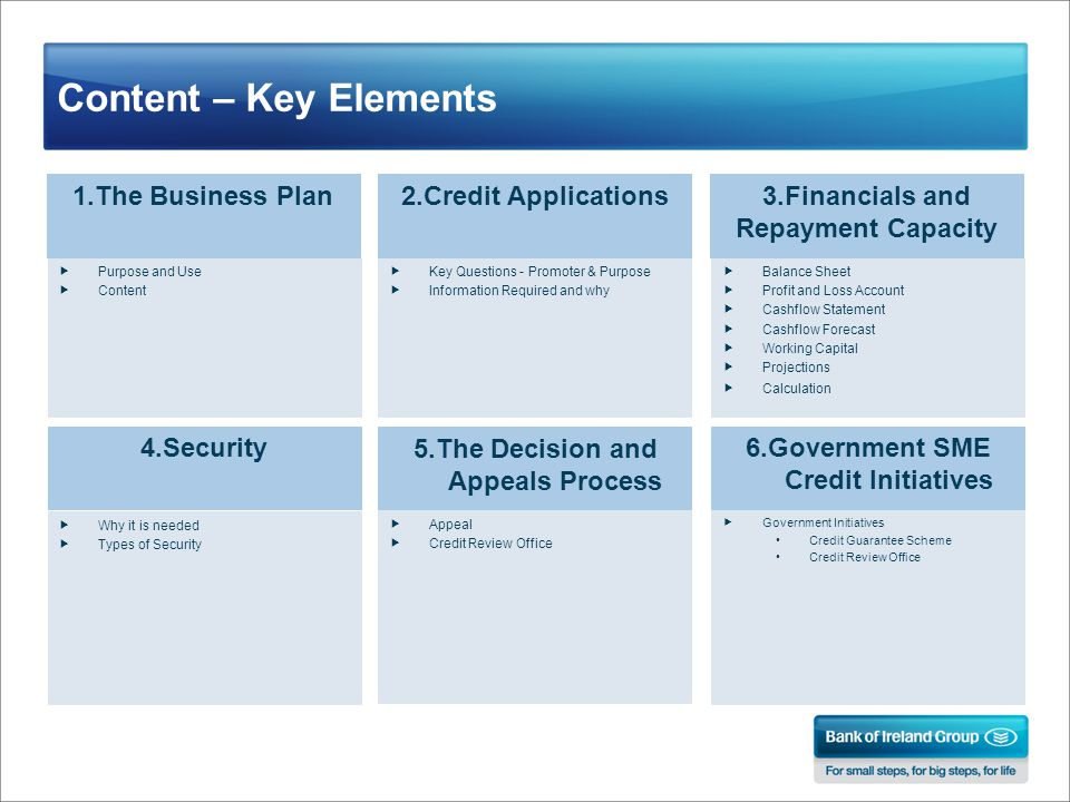 Content – Key Elements 1.The Business Plan2.Credit Applications3.Financials and Repayment Capacity  Purpose and Use  Content  Key Questions - Promoter & Purpose  Information Required and why 4.Security  Why it is needed  Types of Security 5.The Decision and Appeals Process  Appeal  Credit Review Office 6.Government SME Credit Initiatives  Government Initiatives Credit Guarantee Scheme Credit Review Office  Balance Sheet  Profit and Loss Account  Cashflow Statement  Cashflow Forecast  Working Capital  Projections  Calculation
