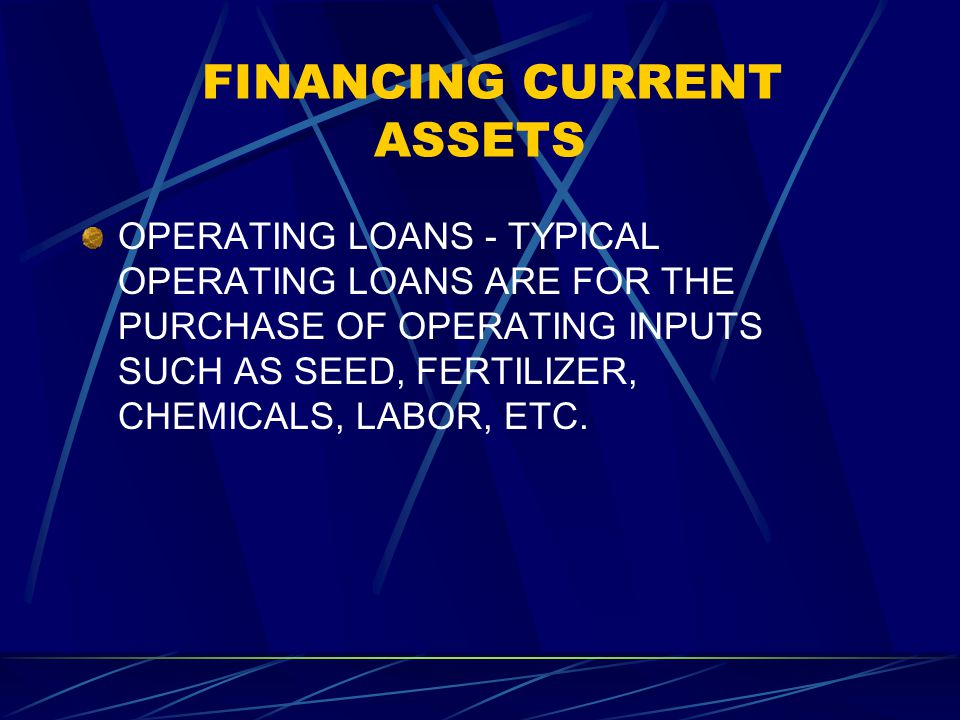 FINANCING CURRENT ASSETS OPERATING LOANS - TYPICAL OPERATING LOANS ARE FOR THE PURCHASE OF OPERATING INPUTS SUCH AS SEED, FERTILIZER, CHEMICALS, LABOR, ETC.