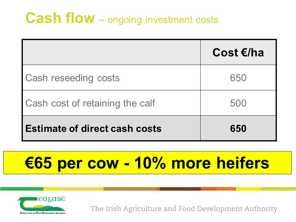 Cash flow – ongoing investment costs Cost €/ha Cash reseeding costs650 Cash cost of retaining the calf500 Estimate of direct cash costs650 €65 per cow - 10% more heifers