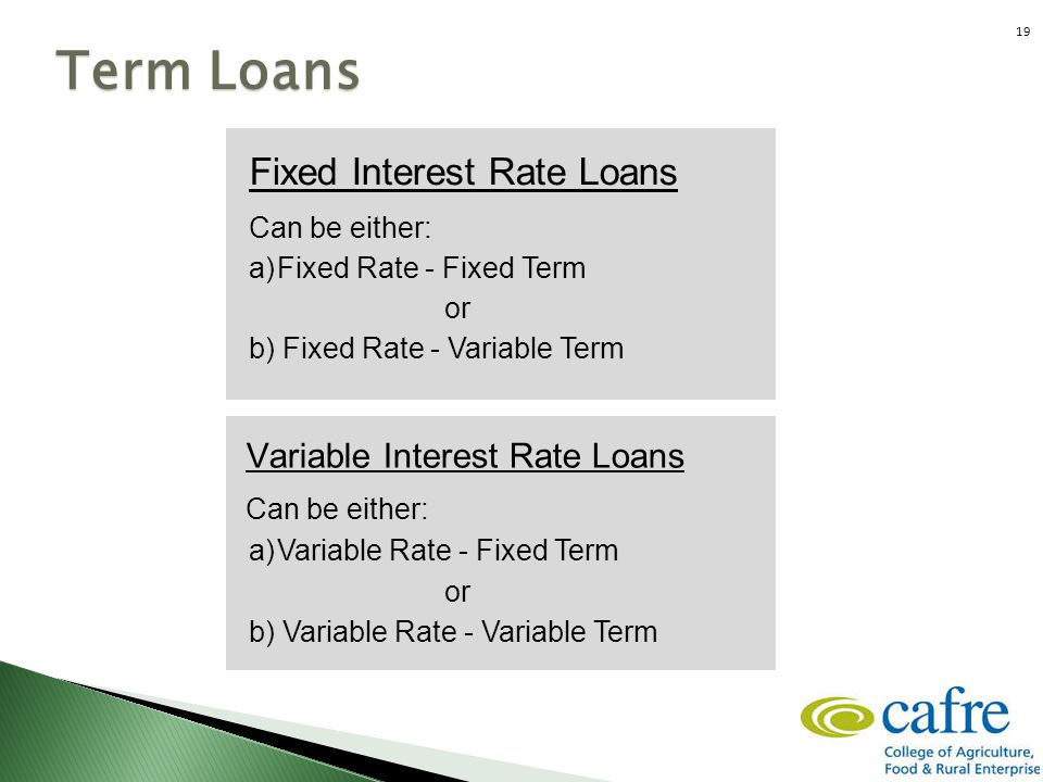 Fixed Interest Rate Loans Can be either: a)Fixed Rate - Fixed Term or b) Fixed Rate - Variable Term Term Loans Variable Interest Rate Loans Can be eit