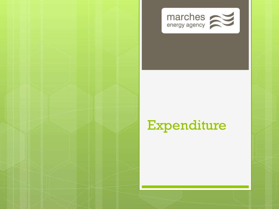 May 7, 2015 10 Budgeting What is Expenditure.