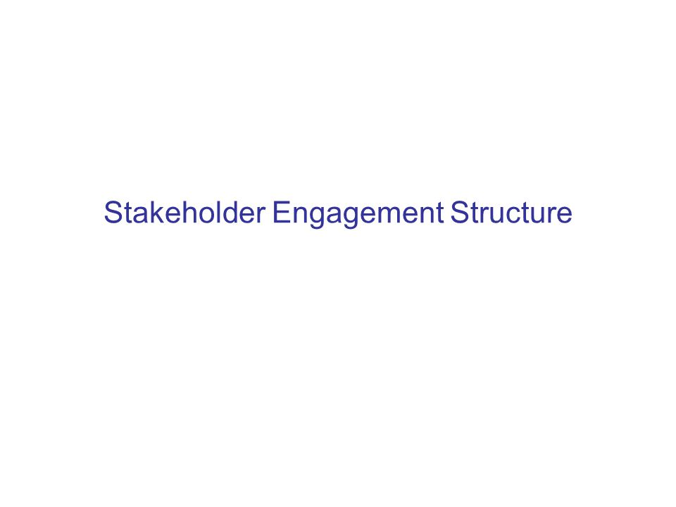 Stakeholder Engagement Structure