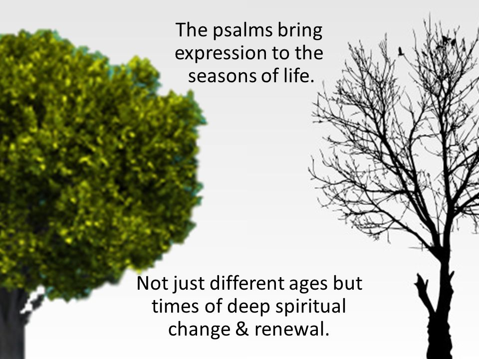 The psalms bring expression to the seasons of life.
