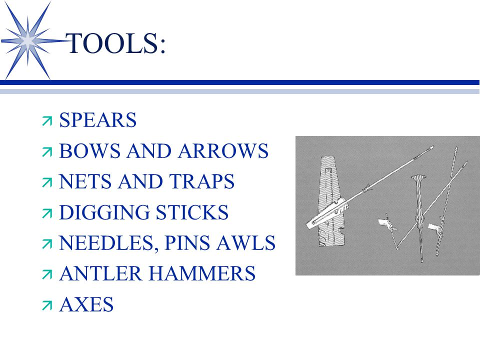 TOOLS: ä SPEARS ä BOWS AND ARROWS ä NETS AND TRAPS ä DIGGING STICKS ä NEEDLES, PINS AWLS ä ANTLER HAMMERS ä AXES