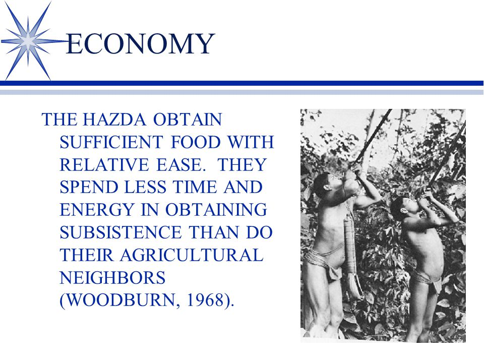 ECONOMY THE HAZDA OBTAIN SUFFICIENT FOOD WITH RELATIVE EASE.