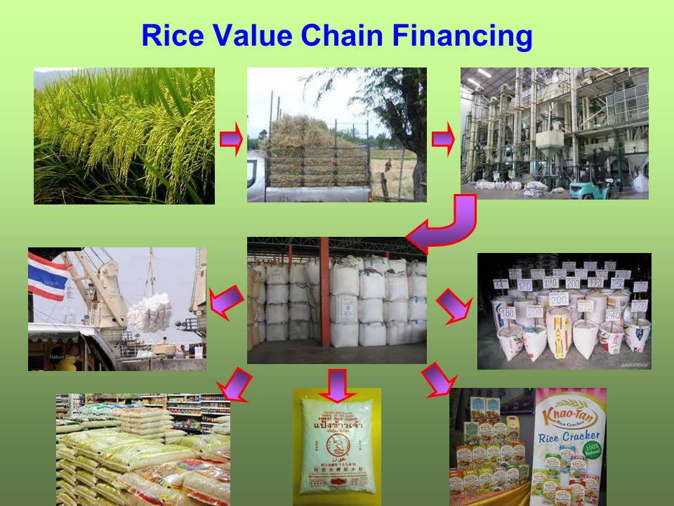Rice Value Chain Financing
