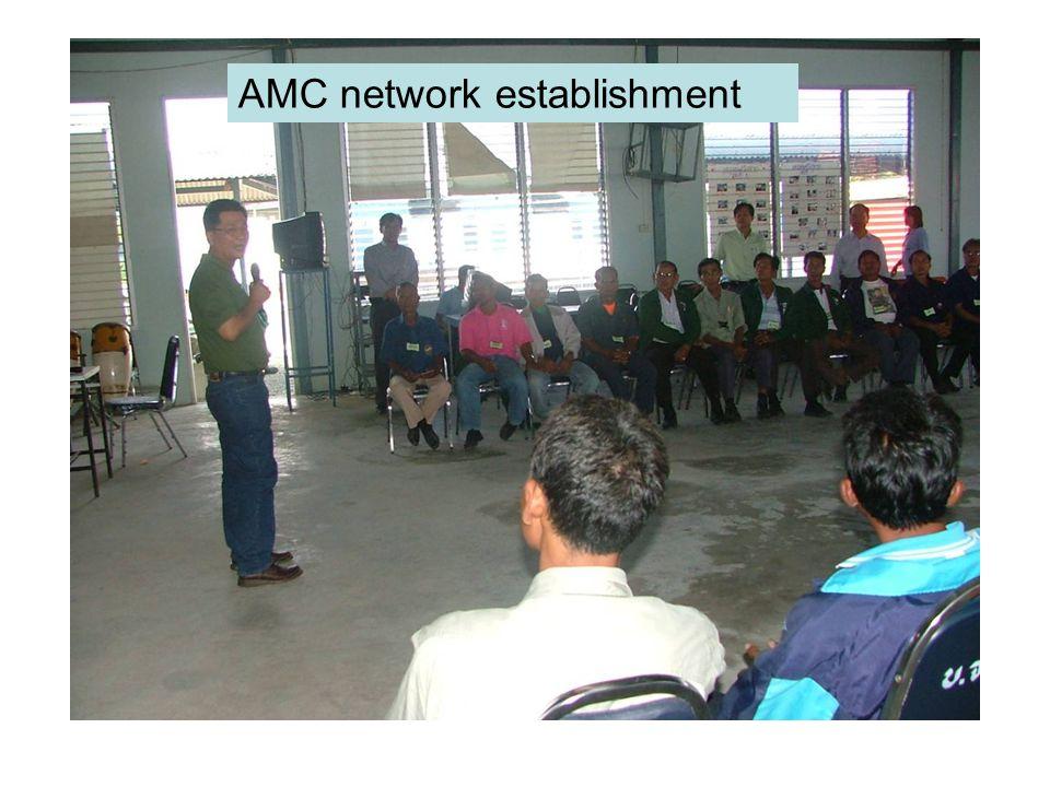 AMC network establishment