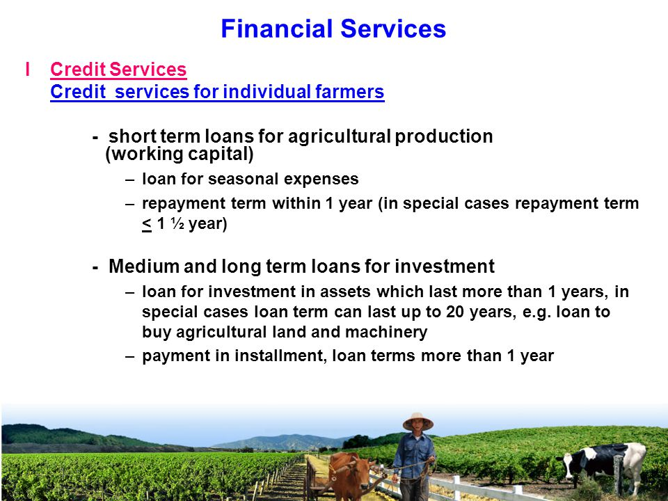 ICredit Services Credit services for individual farmers - short term loans for agricultural production (working capital) –loan for seasonal expenses –repayment term within 1 year (in special cases repayment term < 1 ½ year) - Medium and long term loans for investment –loan for investment in assets which last more than 1 years, in special cases loan term can last up to 20 years, e.g.