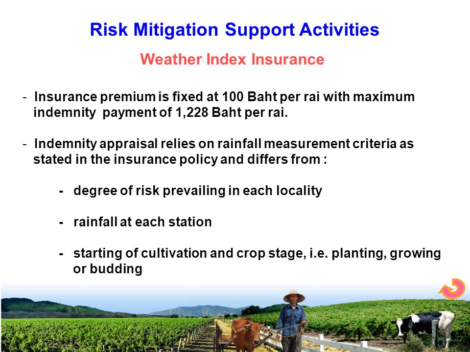 - Insurance premium is fixed at 100 Baht per rai with maximum indemnity payment of 1,228 Baht per rai.