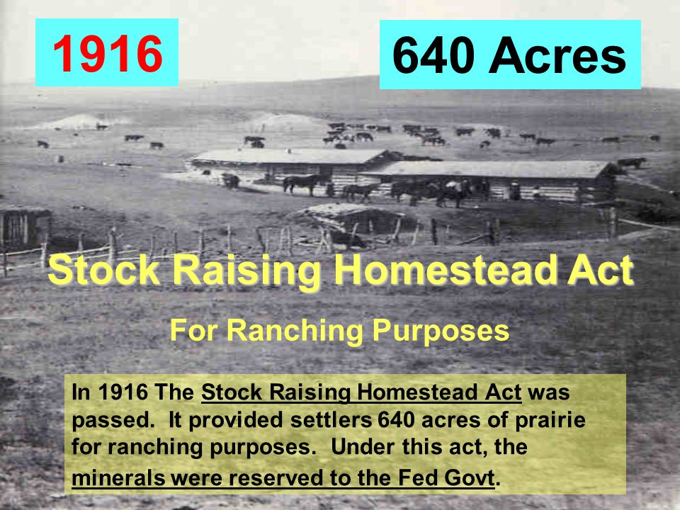 Stock Raising Homestead Act For Ranching Purposes 640 Acres 1916 In 1916 The Stock Raising Homestead Act was passed.