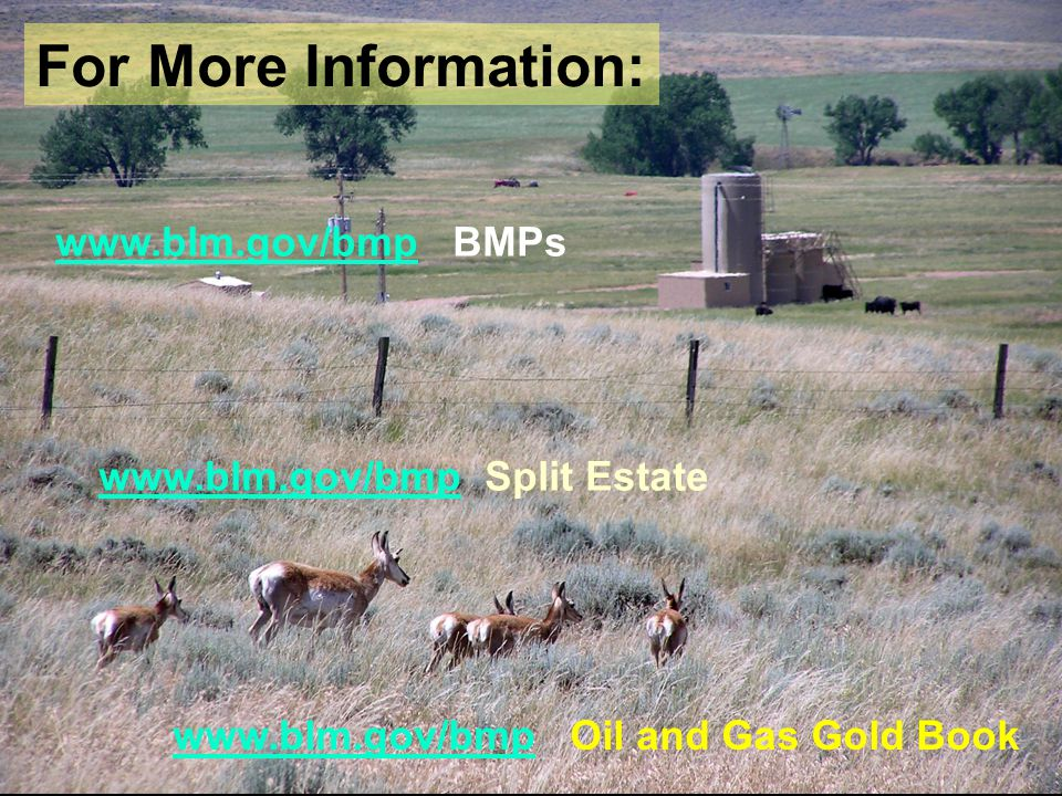 www.blm.gov/bmpwww.blm.gov/bmp BMPs www.blm.gov/bmpwww.blm.gov/bmp Split Estate www.blm.gov/bmpwww.blm.gov/bmp Oil and Gas Gold Book For More Information: