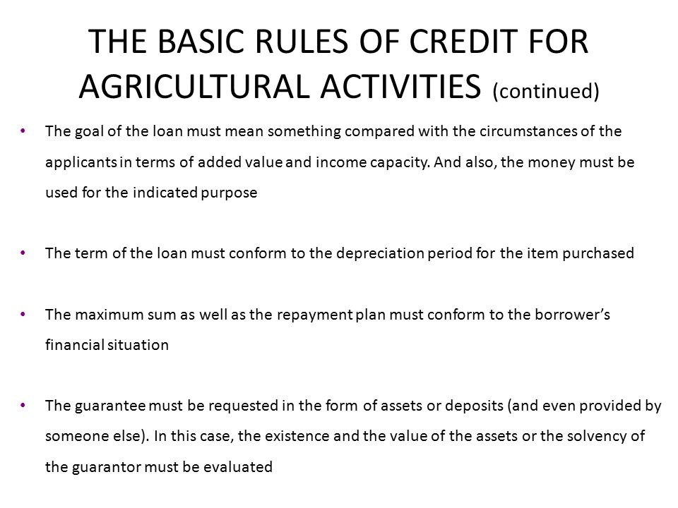 THE BASIC RULES OF CREDIT FOR AGRICULTURAL ACTIVITIES (continued) The goal of the loan must mean something compared with the circumstances of the applicants in terms of added value and income capacity.