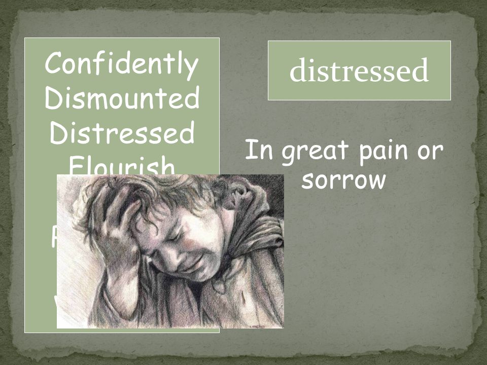 Confidently Dismounted Distressed Flourish Fulfill Permission Repay Vigorously distressed In great pain or sorrow