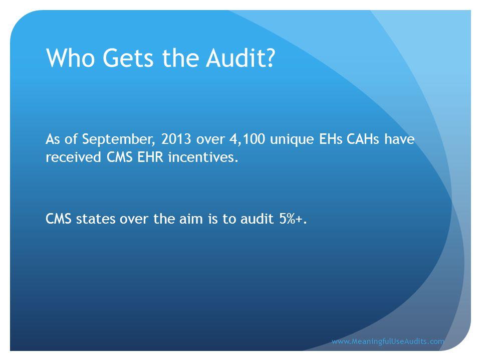 What Generates the Audit.