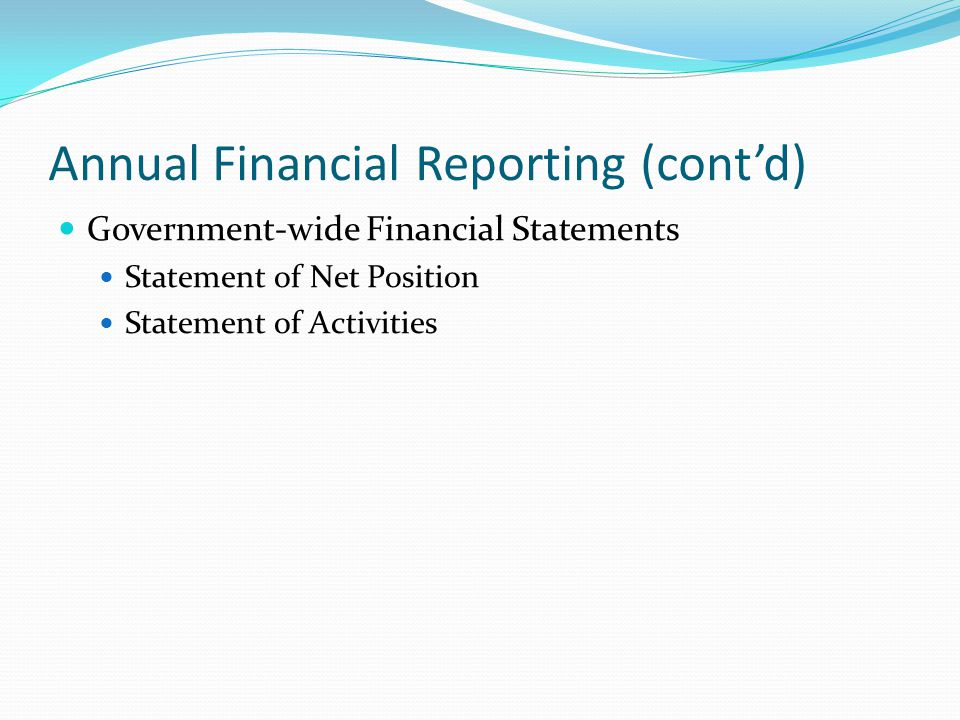 Annual Financial Reporting (cont'd) Government-wide Financial Statements Statement of Net Position Statement of Activities