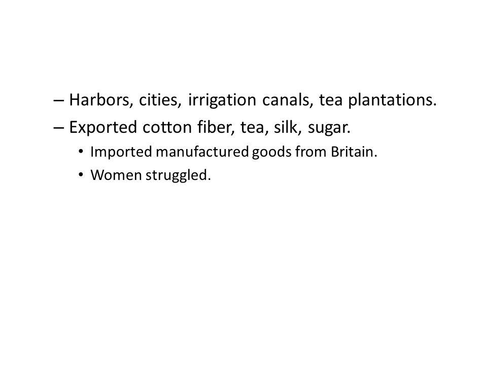 – Harbors, cities, irrigation canals, tea plantations. – Exported cotton fiber, tea, silk, sugar. Imported manufactured goods from Britain. Women stru