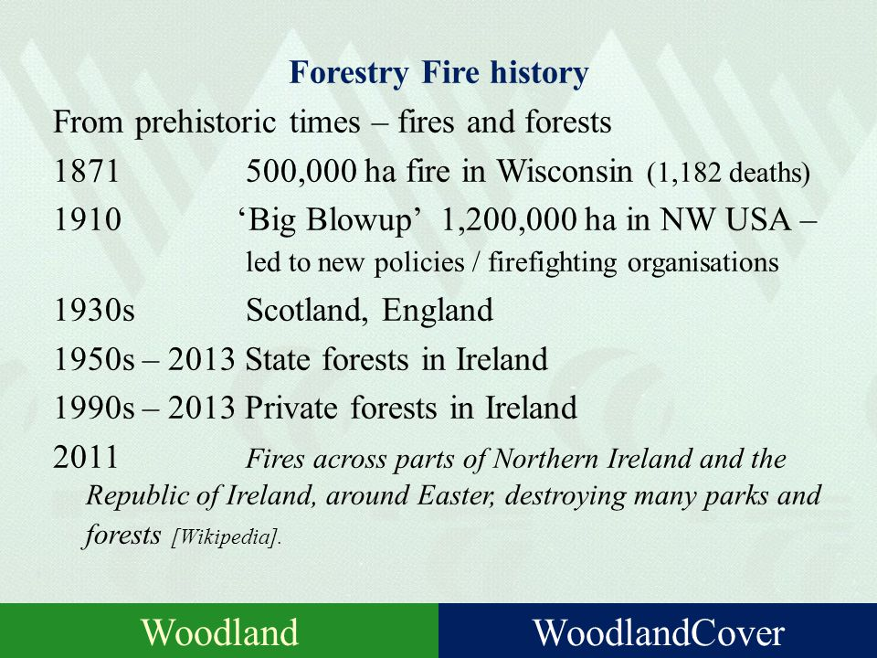 Forestry Insurance history Very recent! 1980s USA (1981 – first TIMOs); UK 1980 -Ireland – Woodland Investments 1994 Woodland Investments Clients 1995