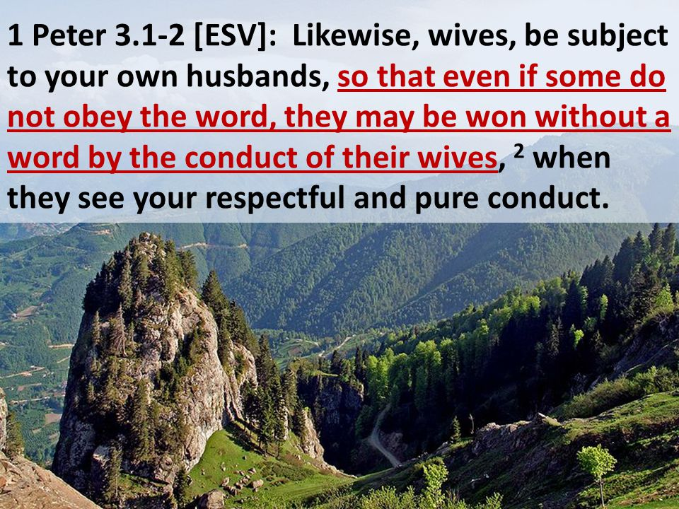 1 Peter 3.1-2 [ESV]: Likewise, wives, be subject to your own husbands, so that even if some do not obey the word, they may be won without a word by th