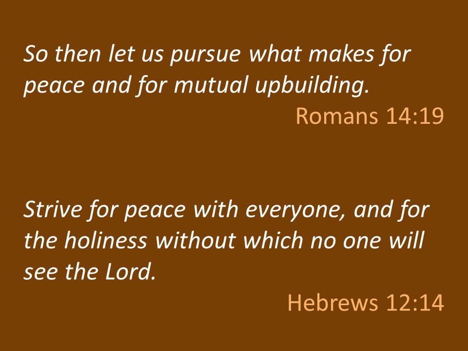 So then let us pursue what makes for peace and for mutual upbuilding.