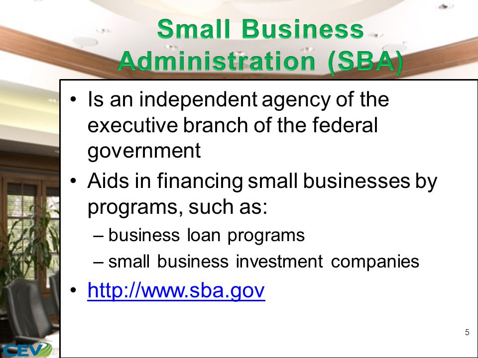 Is an independent agency of the executive branch of the federal government Aids in financing small businesses by programs, such as: –business loan programs –small business investment companies http://www.sba.gov 5