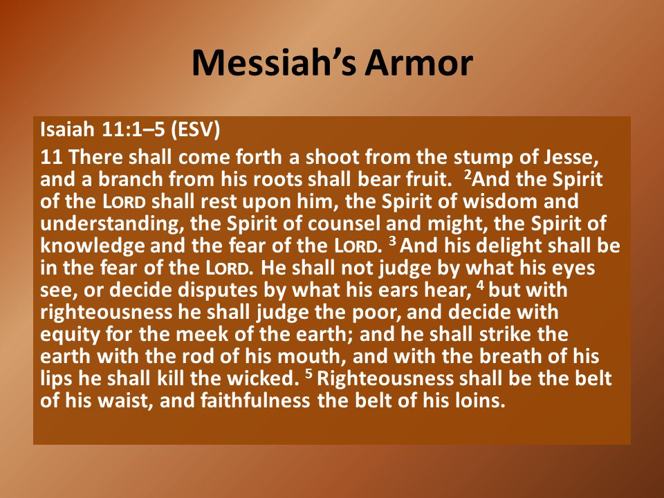 Messiah's Armor Isaiah 11:1–5 (ESV) 11 There shall come forth a shoot from the stump of Jesse, and a branch from his roots shall bear fruit. 2 And the