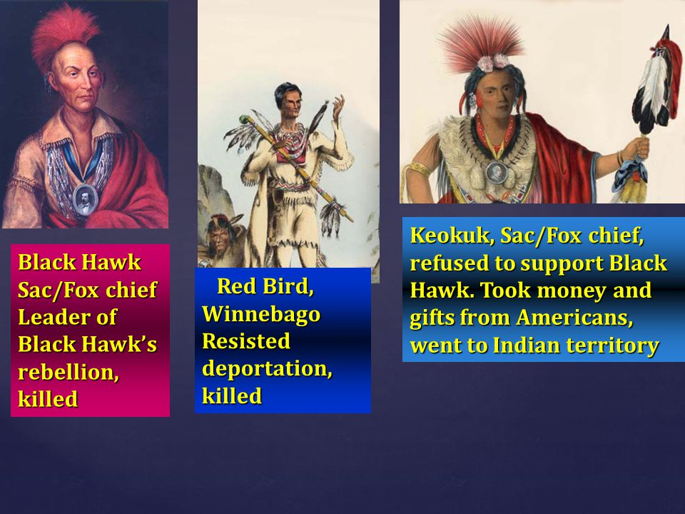 Black Hawk Sac/Fox chief Leader of Black Hawk's rebellion, killed Red Bird, Winnebago Red Bird, Winnebago Resisted deportation, killed Keokuk, Sac/Fox