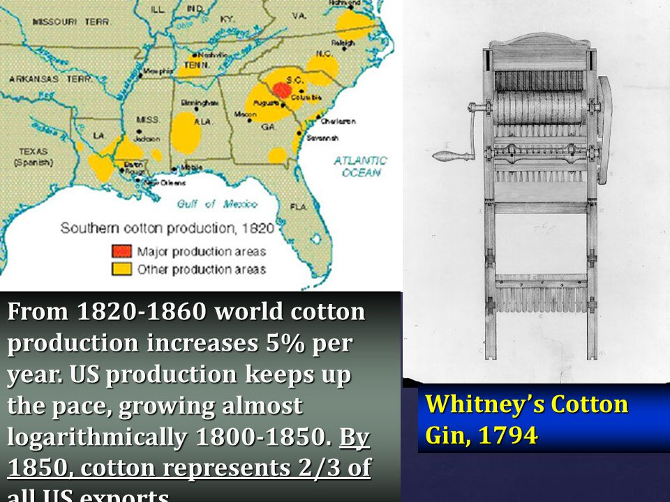 From 1820-1860 world cotton production increases 5% per year. US production keeps up the pace, growing almost logarithmically 1800-1850. By 1850, cott