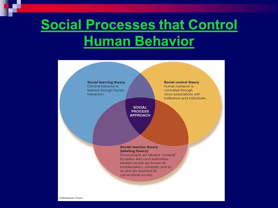 Social Processes that Control Human Behavior