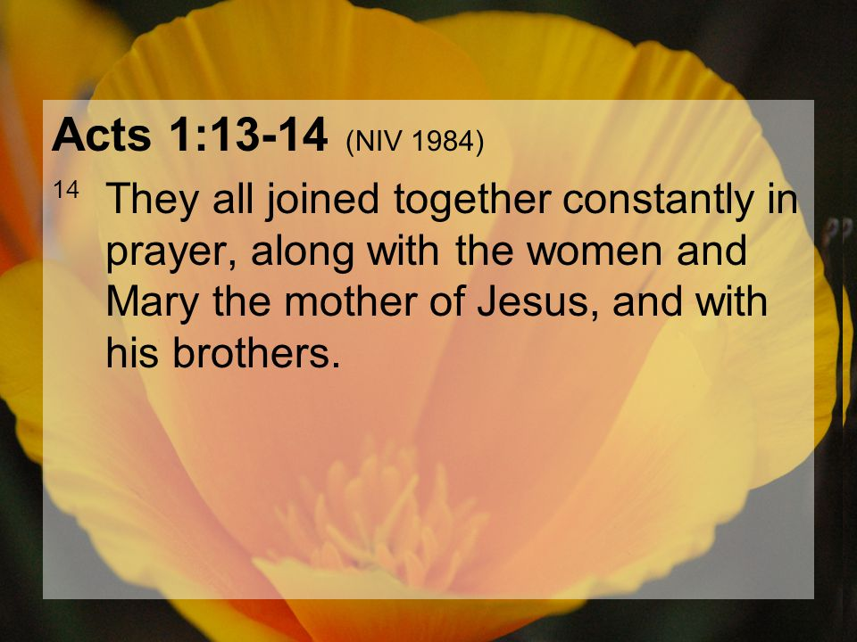 04.15.201214 Acts 1:13-14 (NIV 1984) 14 They all joined together constantly in prayer, along with the women and Mary the mother of Jesus, and with his