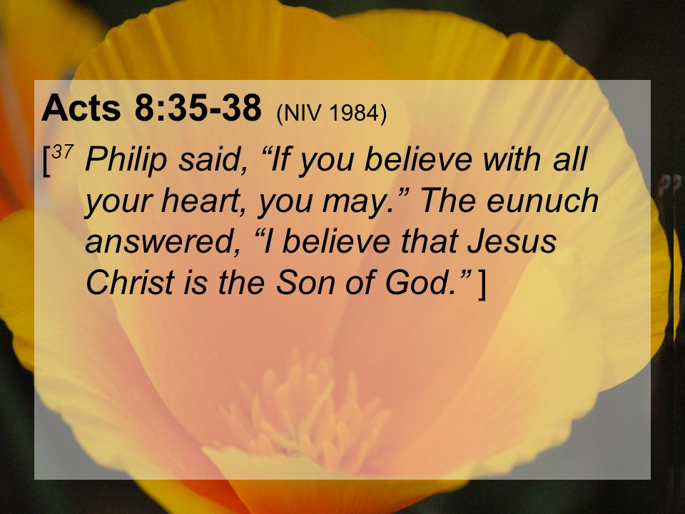 "04.15.201227 Acts 8:35-38 (NIV 1984) [ 37 Philip said, ""If you believe with all your heart, you may."" The eunuch answered, ""I believe that Jesus Chris"