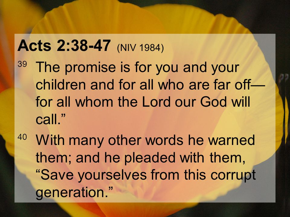 04.15.20127 Acts 2:38-47 (NIV 1984) 39 The promise is for you and your children and for all who are far off— for all whom the Lord our God will call.""