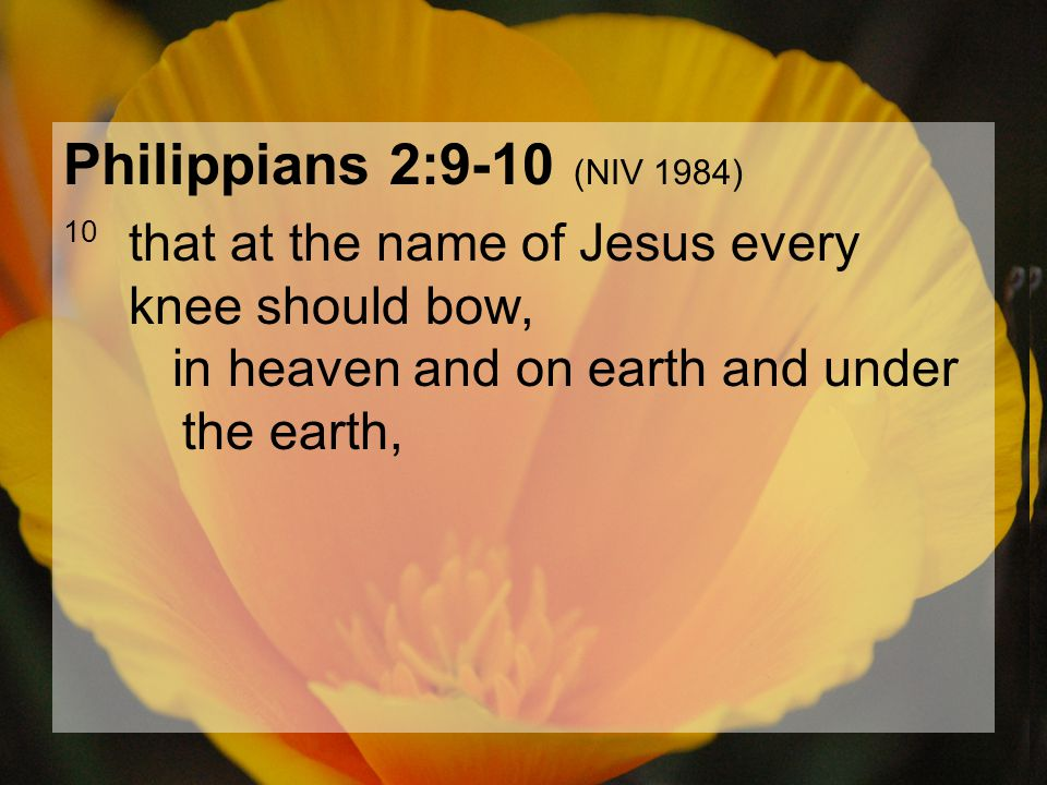04.15.201271 Philippians 2:9-10 (NIV 1984) 10 that at the name of Jesus every knee should bow, in heaven and on earth and under the earth,