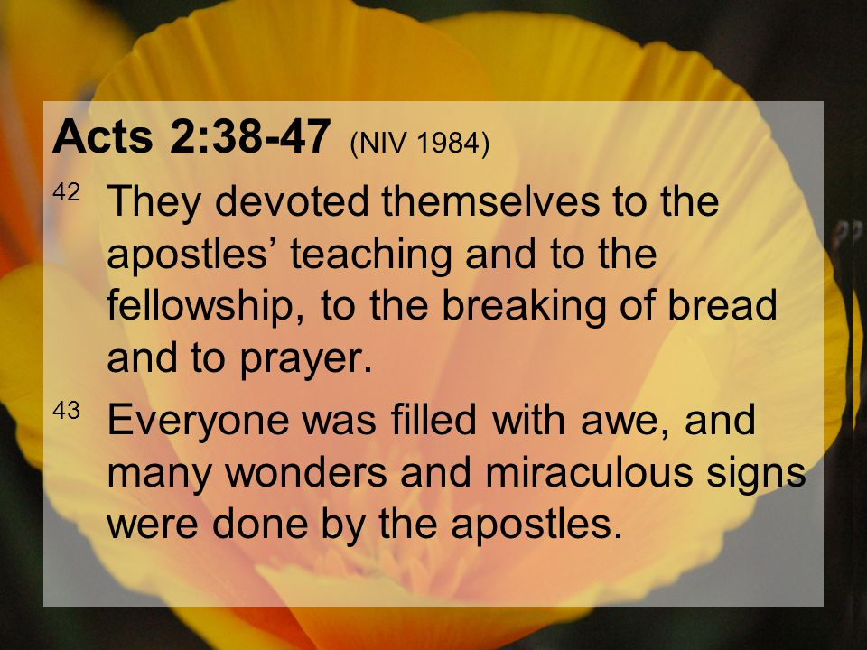 04.15.201210 Acts 2:38-47 (NIV 1984) 44 All the believers were together and had everything in common.