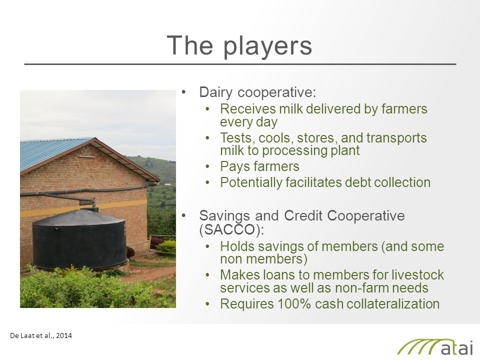 The players Dairy cooperative: Receives milk delivered by farmers every day Tests, cools, stores, and transports milk to processing plant Pays farmers Potentially facilitates debt collection Savings and Credit Cooperative (SACCO): Holds savings of members (and some non members) Makes loans to members for livestock services as well as non-farm needs Requires 100% cash collateralization De Laat et al., 2014
