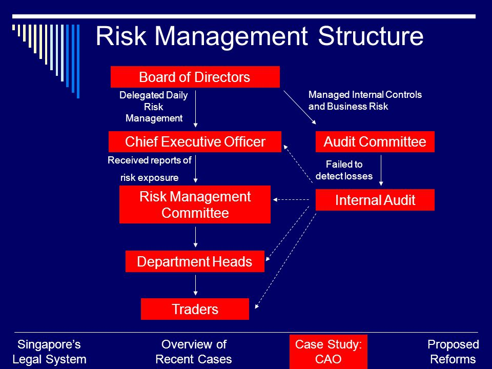 Board of Directors Chief Executive Officer Risk Management Committee Audit Committee Internal Audit Department Heads Traders Delegated Daily Risk Management Managed Internal Controls and Business Risk Failed to detect losses Received reports of risk exposure Risk Management Structure Singapore's Legal System Overview of Recent Cases Case Study: CAO Proposed Reforms