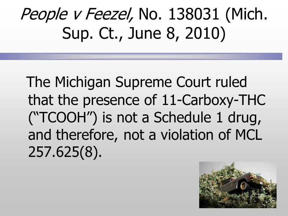 People v Feezel, No. 138031 (Mich. Sup.