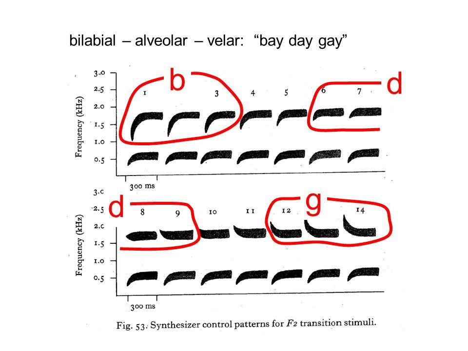 bilabial – alveolar – velar: bay day gay b d d g