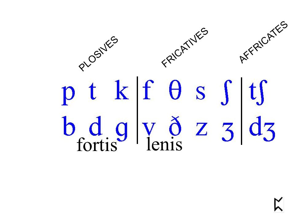fortis lenis PLOSIVES FRICATIVES AFFRICATES