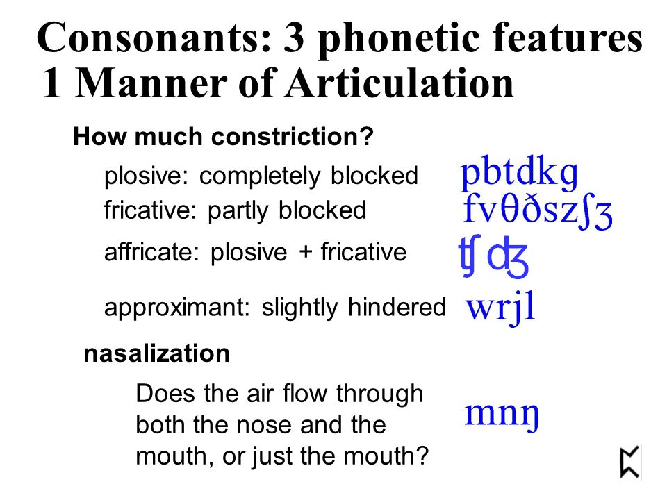 Plosive (stop) Fricative Affricate Nasal Lateral Approximant 1 Manner of Articulation Consonants: 3 phonetic features