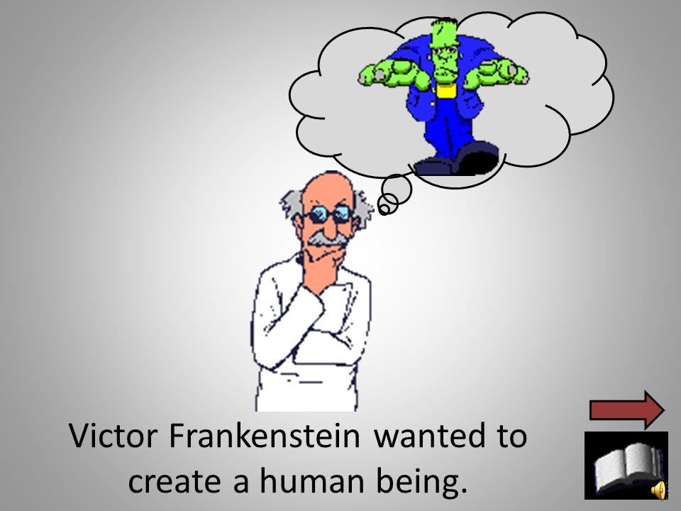 A long time ago there lived, Victor Frankenstein, Elizabeth, Frankenstein's monster, and the monster's bride.