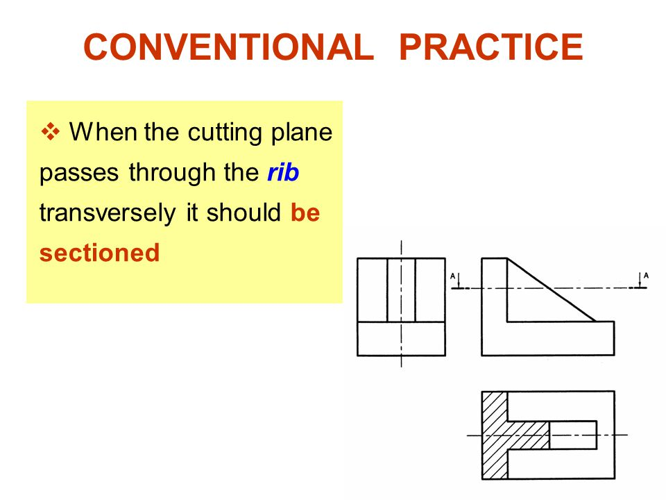 CONVENTIONAL PRACTICE  When the cutting plane passes through the rib transversely it should be sectioned