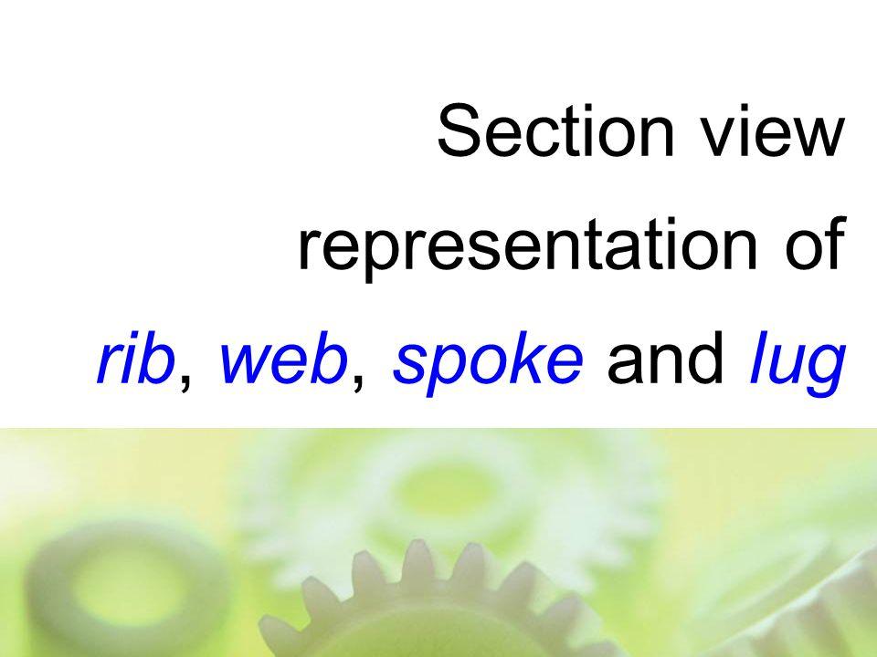 Section view representation of rib, web, spoke and lug