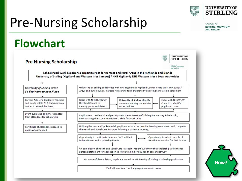 Flowchart How Pre-Nursing Scholarship