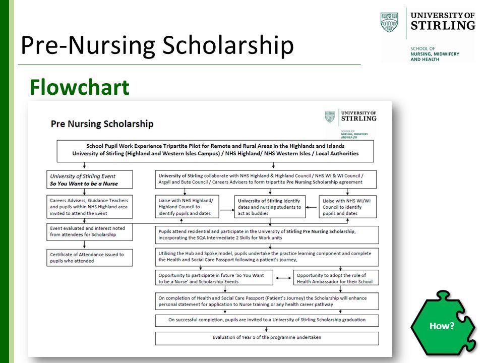 Flowchart How? Pre-Nursing Scholarship