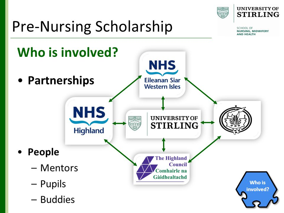 Who is involved? Partnerships People –Mentors –Pupils –Buddies Who is involved? Pre-Nursing Scholarship