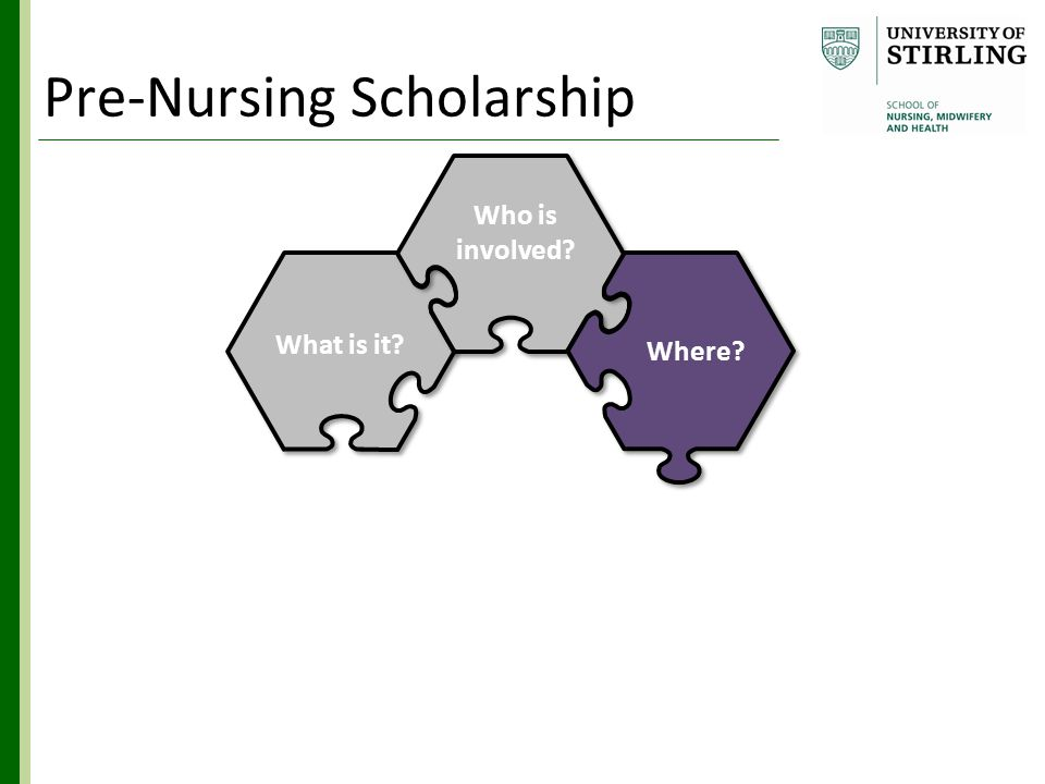 Who is involved? What is it? Hub & Spoke Where? How? Benefits Why? Pre-Nursing Scholarship