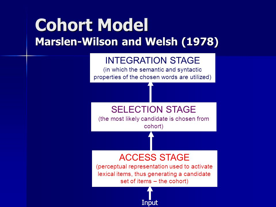 INTEGRATION STAGE (in which the semantic and syntactic properties of the chosen words are utilized) SELECTION STAGE (the most likely candidate is chosen from cohort) ACCESS STAGE (perceptual representation used to activate lexical items, thus generating a candidate set of items – the cohort) Cohort Model Marslen-Wilson and Welsh (1978) Input