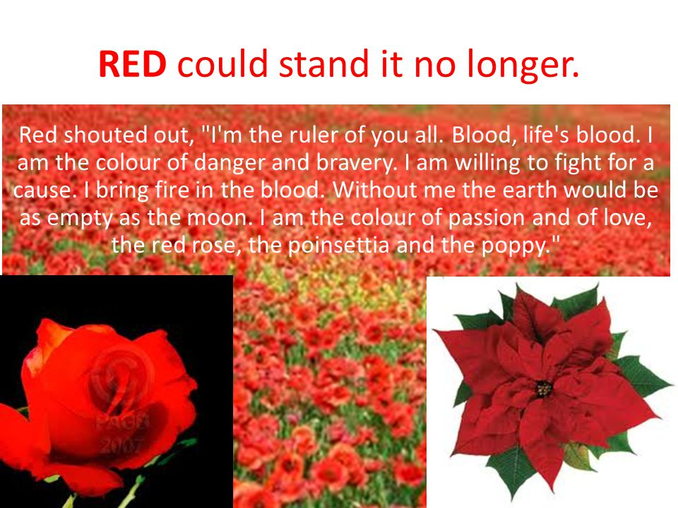 RED could stand it no longer. Red shouted out,