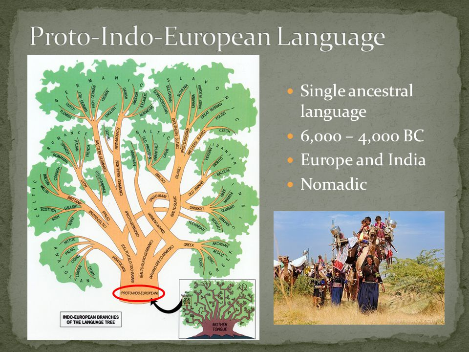 Single ancestral language 6,000 – 4,000 BC Europe and India Nomadic